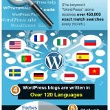 Infografía de Wordpress con las 6 cifras más importantes